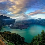 Enjoy The Unique Of Rain Forest Ecosystem At Rinjani Mountain
