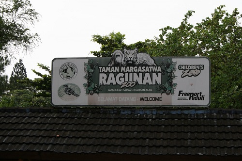 Kebun Binatang Ragunan (Ragunan Zoo)