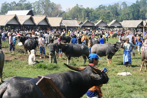 Toraja Traditional Market