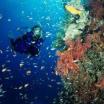 Bunaken Island – The Best Diving And Snorkeling Place In The World