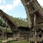 Tana Toraja –  A Unique Tomb You might Find only in Indonesia