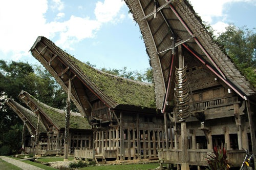 Tana Toraja (Makasar, Indonesia)